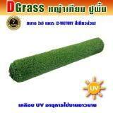 ราคา Dgrass หญ้าเทียม ปูพื้น ตกแต่งสวน ความสูง 2 ซม รุ่น Dg 2 Victory 2V เขียวล้วน ขนาด 2X3 เมตร Dgrass