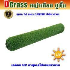 ขาย Dgrass หญ้าเทียม ปูพื้น ตกแต่งสวน ความสูง 2 ซม รุ่น Dg 2 Victory 2V เขียวล้วน ขนาด 2X3 เมตร Dgrass เป็นต้นฉบับ