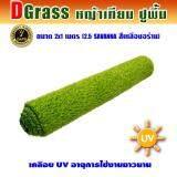 ขาย Dgrass หญ้าเทียม ปูพื้น ตกแต่งสวน ความสูง 2 5 ซม รุ่น 2 5 Savanna 2 5S เหลืองอร่าม ขนาด 2X1 เมตร Dgrass ผู้ค้าส่ง