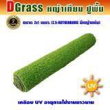 ราคา Dgrass หญ้าเทียม ปูพื้น ตกแต่งสวน ความสูง 2 5 ซม รุ่น Dg 2 5 Rothenburg 2 5R มีหญ้าแห้ง ขนาด 2X1 เมตร Dgrass ออนไลน์