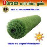 ซื้อ Dgrass หญ้าเทียม ปูพื้น ตกแต่งสวน สีเขียวล้วน ความสูง 4 ซม รุ่น Dg 4 Atrium 4A เขียวล้วน ขนาด 2X3 เมตร ถูก