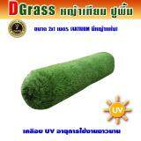 ซื้อ Dgrass หญ้าเทียม ปูพื้น ตกแต่งสวน มีหญ้าแห้ง ความสูง 4 ซม รุ่น Dg 4 Atrium 4A มีหญ้าแห้ง ขนาด 2X1 เมตร ใหม่ล่าสุด