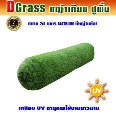 ราคา Dgrass หญ้าเทียม ปูพื้น ตกแต่งสวน มีหญ้าแห้ง ความสูง 4 ซม รุ่น Dg 4 Atrium 4A มีหญ้าแห้ง ขนาด 2X1 เมตร Dgrass ใหม่