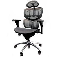 ราคา Ergotrend เก้าอี้เพื่อสุขภาพ เออร์โกเทรน รุ่น บียอร์นบัตเตอร์ฟลาย Beyond Butterfly 01Gmm สีเทา Ergo Trend