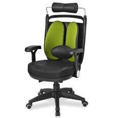 ขาย Ergotrend เก้าอี้เพื่อสุขภาพ เออร์โกเทรน รุ่น Dual08 สีเขียว กรุงเทพมหานคร