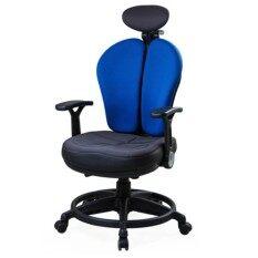 ขาย Ergotrend เก้าอี้เพื่อสุขภาพ เออร์โกเทรน รุ่น Dual 07Uff ผ้าสีน้ำเงิน Ergo Trend ผู้ค้าส่ง