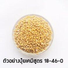 โปรโมชั่น ฟอสฟอรัส ปุ๋ยเคมีสูตร 18 46 แม่ปุ๋ยเกรดเอ สูตรเพิ่มช่อดอกพืชทุกชนิด 1 Kg 5 Angle ใหม่ล่าสุด