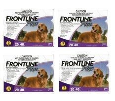 ราคา Frontline Plus For Dogs 20 40 Kg กล่องละ 3 หลอด 4 Units Frontline Plus เป็นต้นฉบับ