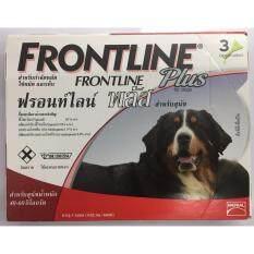 ราคา Frontline Plus For Dogs ยาหยอดกำจัดเห็บ หมัด สุนัข 40 60 Kg บรรจุ 3 หลอด 1 Box ใหม่ล่าสุด
