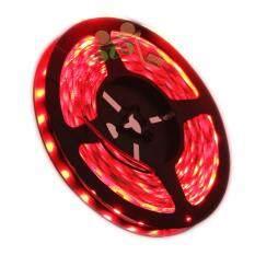 ราคา G2G ไฟเส้นริบบ้อน Led Strip Light 12V ยาว 5 เมตร 300 Led Smd 3528 แสงไฟสีแดง เป็นต้นฉบับ