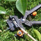 ขาย Garden Pro Pruning Shears Fruit Tree Scissor Grafting Cutting Tool Suit Machine Intl Unbranded Generic