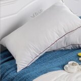 Girlhood Pillow Interior Intl Unbranded Generic ถูก ใน จีน