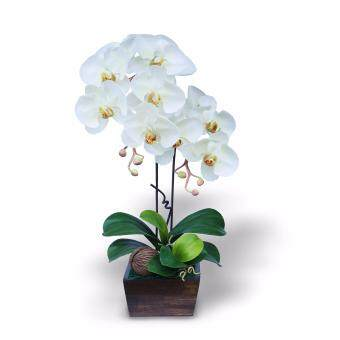 Handitop แจกันดอกไม้ประดิษฐ์ ดอกฟาแลนนอฟซิส Artificial Phalaenopsis Orchid Flower Arrangement