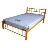 ขาย Inter Steel โครงเตียง เตียงเหล็ก 4 ฟุต รุ่น ล็อตเต้ สีส้ม ออนไลน์ ใน Thailand