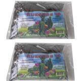 ซื้อ K P The Soil Of The Diamond S Blackjack ดินแคตตัส ดินปลูกระบองเพรช 2ถุง ออนไลน์