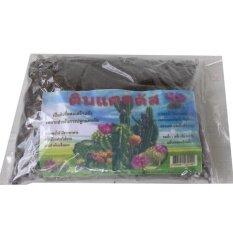 ขาย ซื้อ K P The Soil Of The Diamond S Blackjack ดินแคตตัส ดินปลูกระบองเพรช 1ถุง ใน กรุงเทพมหานคร