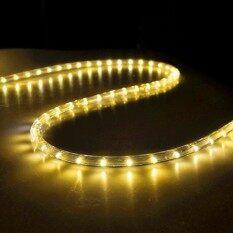 โปรโมชั่น ไฟเส้นสายยาง Led Rope Light ฟรีปลั๊กยาว 10เมตร แสงไฟกระพริบ Multi Color Rgb สลับสีได้8 สี ปรับจังหวะได้ กรุงเทพมหานคร