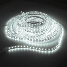 ขาย Ledandlamp ไฟเส้นแอลอีดี Led Rope Light ฟรีปลั๊กยาว 8 มิลลิเมตร 2 เส้น แสงสีขาว Led And Lamp