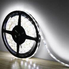 ขาย Ledandlamp ไฟเส้น Led Ribbon Strip 12V ขนาด 5 M งานภายใน แสงสีขาว Day Light ถูก ไทย