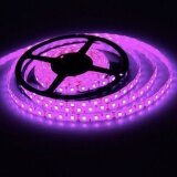 ขาย ซื้อ Ledandlamp ไฟเส้นแอลอีดี Led Ribbon Strip 12V ขนาด 5 M งานภายใน แสงสีชมพู Pink