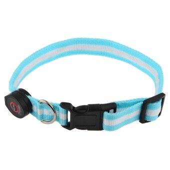 LT365 6 LED Flashing Safety Dog Collar Pet Collar Tag Blue
