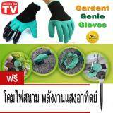 Mr Gadget ถุงมือทำสวน ถุงมือ การเกษตร ช่วยงานสวน ขุดดิน พรวนดิน อเนกประสงค์ Garden Genie Gloves แถมฟรี ไฟสนามหญ้า โซล่าเซลล์ พลังงานแสงอาทิตย์ แสงสีส้ม 1 หลอด Solar Outdoor Saving Light Warm 1 อัน มูลค่า 199 บาท Thailand