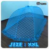 ส่วนลด Ndgh มุ้งครอบนอนสบายสำหรับผู้ใหญ่ Size Xxl สีฟ้าทะเล Dragon Horse Covernet กรุงเทพมหานคร