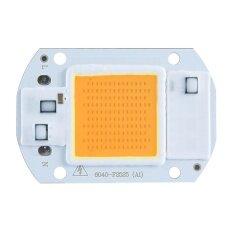 ซื้อ Ounjea Top Quality Utility Lights Lighting Ac220V 20W 30W 50W White Warm White Cob Led Chip 40X60Mm For Diy Flood Light White Cob Led Driver Watt Chip Warm Intl Louis Will