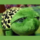 ส่วนลด สินค้ายอดฮิต หมอนผ้าห่ม ตุ๊กตาผ้าห่ม ลายเต่า Bgshop999