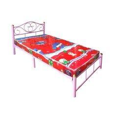 ขาย Pt เตียงเหล็ก ขา 2 นิ้ว พร้อมที่นอนฟองน้ำ ขนาด 3 5 ฟุต รุ่น Duo Lotus 3 5 สีชมพู เป็นต้นฉบับ