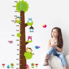 ซื้อ Purify สติกเกอร์ติดผนังวัดส่วนสูง รูปต้นไม้ ใน กรุงเทพมหานคร