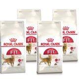 โปรโมชั่น Royal Canin Fit 400G 4 Units อาหารสำหรับแมวโตอายุ1ปีขึ้นไป ขนาด400กรัมX 4ถุง