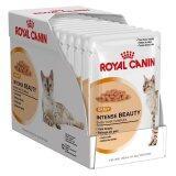 ขาย Royal Canin Intense Beauty Pouch Gravy 12 Pouches New Packaging โรยัลคานิน อาหารชนิดเปียกแบบซอง 85 กรัม สำหรับแมวโตอายุ 1 ปีขึ้นไป บำรุงขนและผิวหนัง เกรวี่ 12 ซอง ไทย