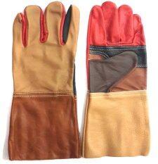 ขาย S Shir ถุงมือหนังแท้ยาว 12 ใน ไทย
