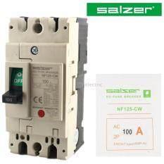 ขาย Salzer สวิทซ์ตัดตอนอัตโนมัติ Mccb รุ่น Nf 125Cw ชนิด 2P 100A 220V No Fuse Breaker Salz เป็นต้นฉบับ