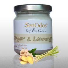 ขาย Senodos 100 Ginger Lemongrass Scented Soy Candles With Pure Essential Oils 190 G Senodos ผู้ค้าส่ง