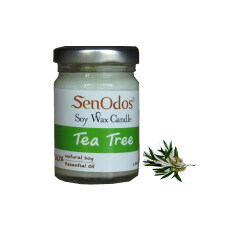 โปรโมชั่น Senodos 100 Tea Tree Scented Soy Candles With Pure Essential Oils 45G Senodos