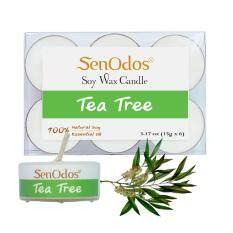 Senodos 100 Tea Tree Scented Soy Candles With Pure Essential Oils Tealight 15G X 6 Pcs Senodos ถูก ใน กรุงเทพมหานคร