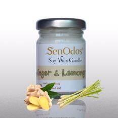 ราคา Senodos เทียนหอม อโรม่า Ginger Lemongrass Scented Soy Candle Aroma 45 G กลิ่นขิง ตะไคร้ Senodos เป็นต้นฉบับ