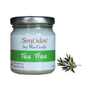 SenOdos เทียนหอม อโรม่า Tea Tree Scented Soy Candle Aroma 190 g. (กลิ่นทีทรีออยล์แท้)