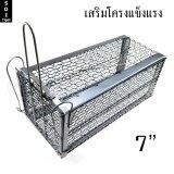 ซื้อ Soi Tiger กรงดักหนู กรง กรงดักกระรอก กับดัก เสริมโครง 7 ถูก ใน กรุงเทพมหานคร