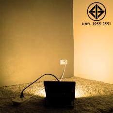 ราคา สปอตไลท์ 30W เสียบปลั้ก ใช้ได้เลย 220 V แสงเหลืองวอมไวท์ ถูก