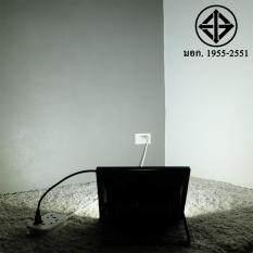 สปอตไลท์ 50W เสียบปลั้ก ใช้ได้เลย 220 V แสง ขาว Greenlight ถูก ใน ไทย