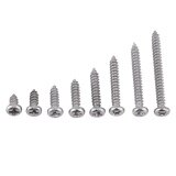 ขาย Stainless Steel 304 M3 Self Tapping Screws For Woodworking Pan Head Intl ออนไลน์ จีน