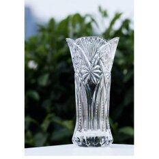 ราคา Transparent Glass Vase Flower Hydroponic Living Room Decoration Creative Glass Bottle Vase Intl Jy เป็นต้นฉบับ