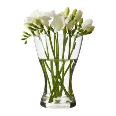 ขาย Vasen แจกัน Vase สูง 20 Cm แก้วใส เป็นต้นฉบับ