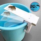 ซื้อ Walk Plank Mouse Mice Rat Trap Rodent Rat Auto Reset Pest Control Bait Catcher White Intl ใหม่