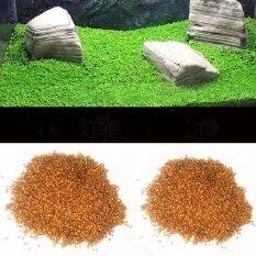ราคา เมล็ด หญ้าน้ำ Water Grass Mini Leaf ใบเล็ก สำหรับปลูกตกแต่งตู้ปลา ตู้ไม้น้ำ ใหม่