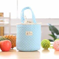 ขาย Y And L Support กระเป๋าเก็บอุณหภูมิ เก็บความร้อน เย็น ลายจุด สีฟ้า Cooler Bag 226 Blue Thailand ถูก