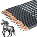 ส่วนลด Ybc 14Pcs Professinal Sketch Art Drawing Pencil 6H 12B Sketching Pencils Intl Unbranded Generic จีน